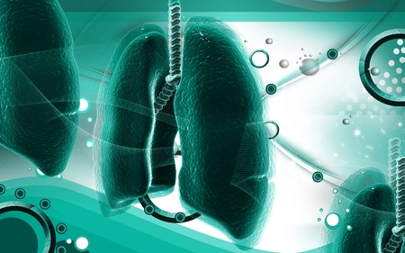 gullet: Ilustraci�n digital de pulmones humanos en fondo de color