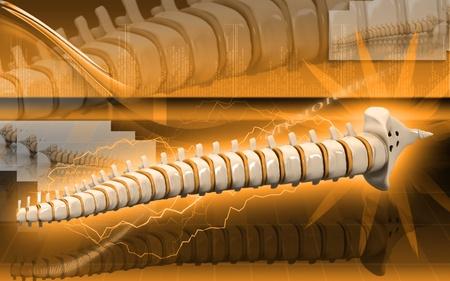 Digital  illustration  of back bone in    colour background Stock Illustration - 9089124