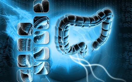 Digital illustration of large intestine in colour background Stock Illustration - 9089253