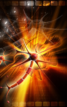 Digital illustration of  neuron  in colour  background Stock Illustration - 9258422