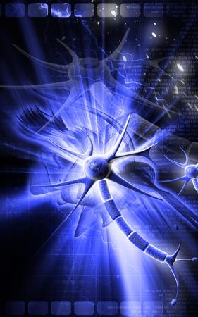 Digital illustration of  neuron  in colour  background  Stock Illustration - 9258417