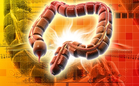 Digital illustration of large intestine in colour background Stock Illustration - 9339954