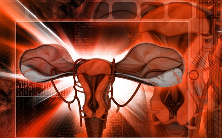fallopian tubes: Digital illustration of  Uterus  in  colour  background