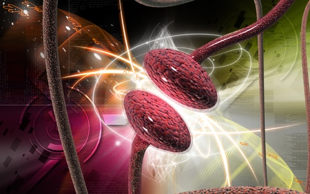 nerve cells: Digital illustration of synapse in colour background   Stock Photo
