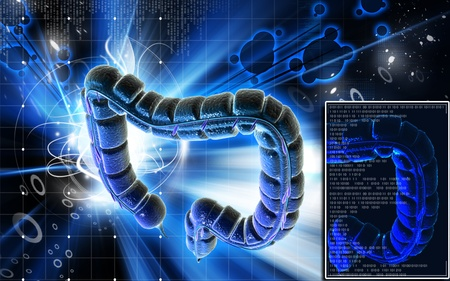 Digital illustration of large intestine in colour background Stock Illustration - 9444399