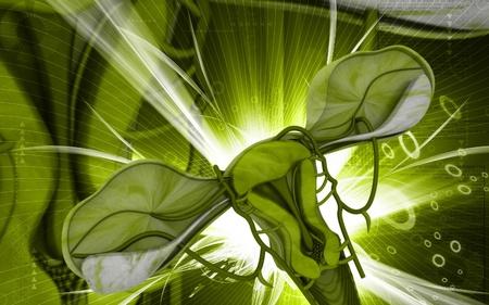 Digital illustration of  Uterus  in  colour  background Stock Illustration - 9536814