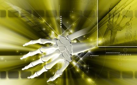 Digital illustration of hand bone in colour background Stock Illustration - 9536811