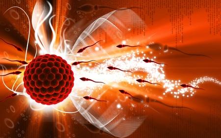 Ilustración digital de esperma y el óvulo en fondo de color