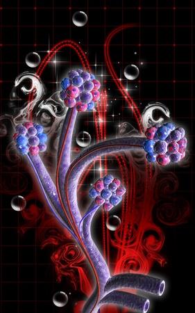 alveolos: Ilustraci?n digital de los alv?olos en el color de fondo