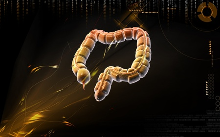 Digital illustration of large intestine in colour background Stock Illustration - 9711071