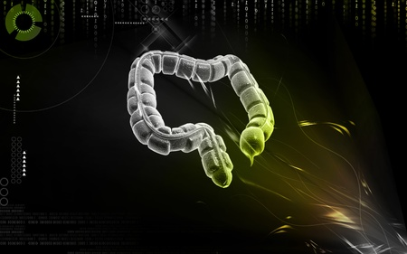 Digital illustration of large intestine in colour background Stock Illustration - 9711069