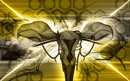 Digital illustration of  Uterus  in  colour  background Stock Illustration - 9711137