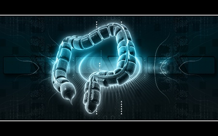 Digital illustration of large intestine in colour background  Stock Illustration - 9711428