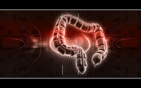 Digital illustration of large intestine in colour background Stock Illustration - 9711429
