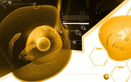 Digital illustration of  human cell   in colour  background   illustration