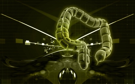 Digital illustration of large intestine in colour background Stock Illustration - 9840759