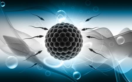 espermatozoides: Ilustraci�n digital de esperma y el �vulo en fondo de color