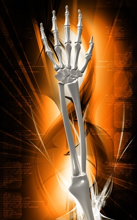 Digital illustration of hand bone in colour background Stock Illustration - 9840790