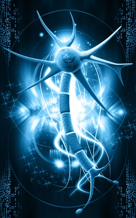 Digital illustration of  neuron  in colour  background   illustration