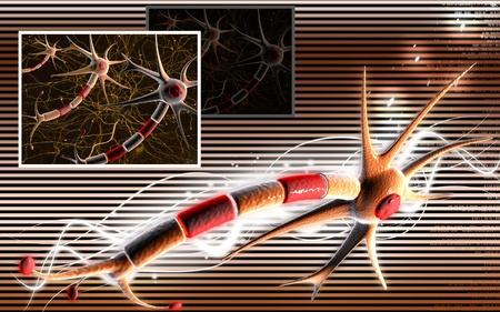 Digital illustration of  neuron  in colour  background  Stock Illustration - 9841374