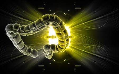 Digital illustration of large intestine in colour background Stock Illustration - 9841437