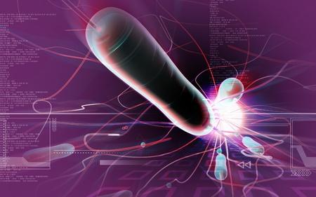 colera: Ilustraci�n digital de bacterias del c�lera en fondo de color