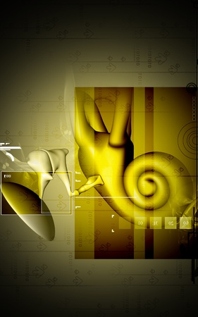 utricle: Digital illustration of  ear in colour  background   Stock Photo