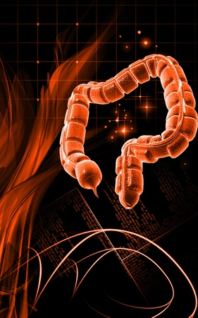 Digital illustration of large intestine in colour background Stock Illustration - 9954109