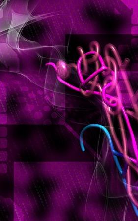 nephron: Digital illustration of  nephron   in  colour background  Stock Photo