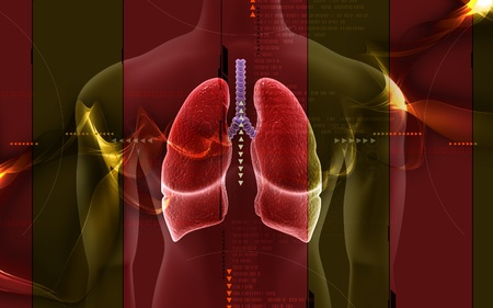 pulmones: Digital illustration of Human body with lungs in colour background  Stock Photo