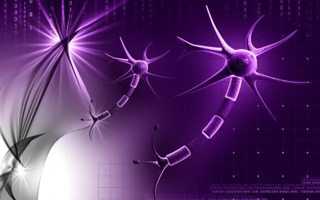 Digital illustration of  neuron  in colour  background  Stock Illustration - 10028601