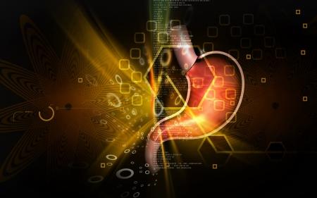 Digitální ilustrace žaludku v barvě pozadí