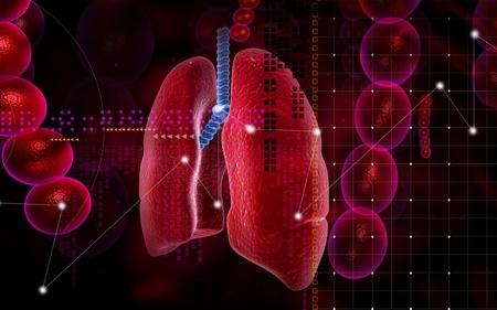 gullet: Ilustraci�n digital de los pulmones humanos en fondo de color  Foto de archivo