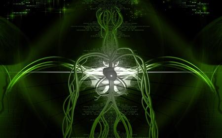 Digital illustration of vascular system in colour background  Stock Illustration - 10294642