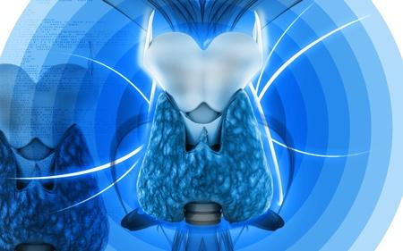 Digitální ilustrace štítné žlázy v barvě pozadí