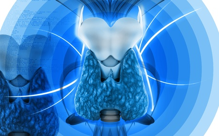oblique: Digital illustration of  thyroid in colour  background