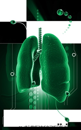 pulmones: Digital illustration of human lungs in colour background  Stock Photo