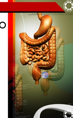 Digital illustration of human digestive system in colour background Stock Illustration - 11223501