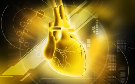 veine humaine: Heart illustration num�rique du coeur en arri�re-plan de couleur Banque d'images