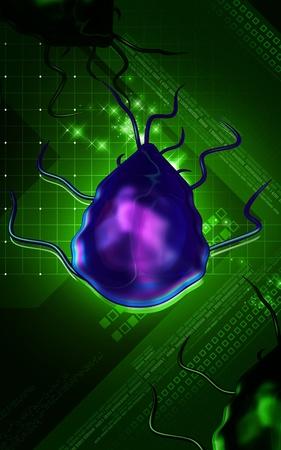 giardia: Digital illustration of Giardia in colour background