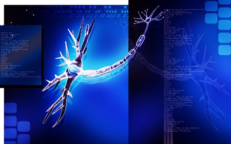 Digital illustration of  neuron  in colour  background  Stock Illustration - 13103326