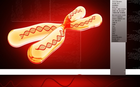 chromosome x y: Digital illustration  of chromosome in   colour background    Stock Photo