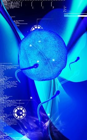 Digital illustration of  sperm  in colour  background  Stock Illustration - 13525063