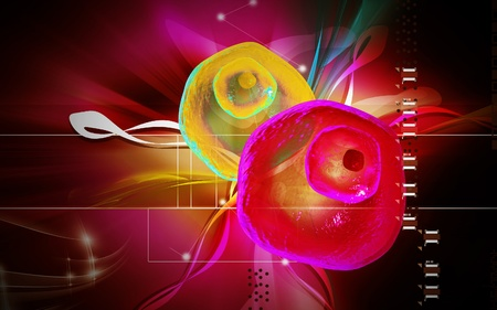 ovum: Digital illustration of  ovum cell in colour  background  Stock Photo