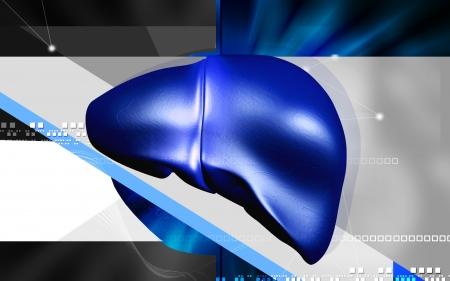 Digital illustration of  liver  in  colour  background Stock Illustration - 14366836