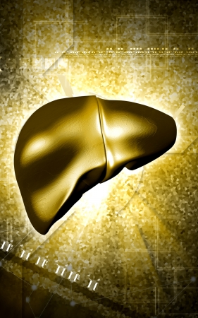 Digital illustration of  liver  in  colour  background  Stock Illustration - 15230135