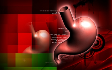 Digital illustration of  stomach  in colour  background  Stock Illustration - 16158288