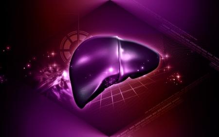 Digital illustration of  liver  in  colour  background Stock Illustration - 16263045