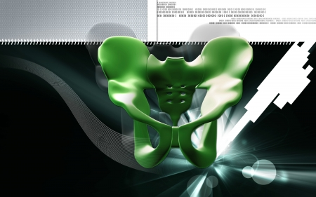 Digital illustration  of pelvic girdle in    colour background   Stock Illustration - 20359848