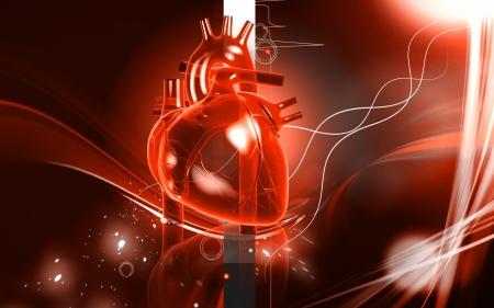 Digital illustration of  heart  in  colour  background